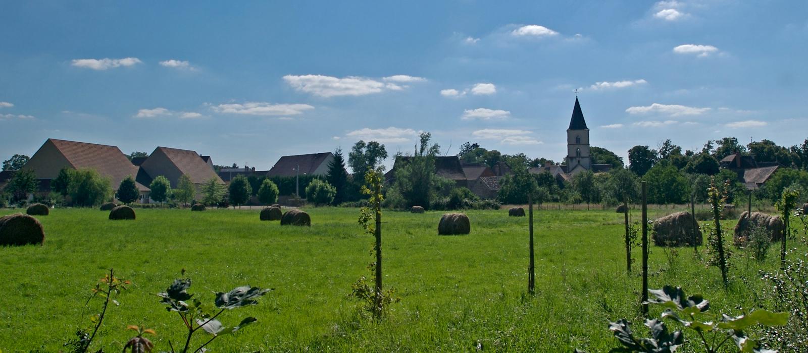Berthaut Dorf Epoisses