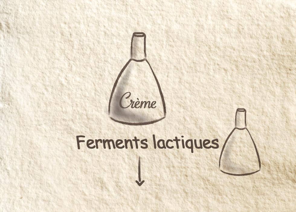 Ferments lactiques