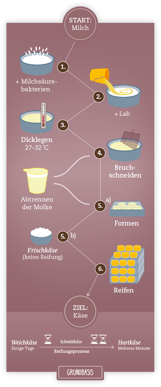 So wird Käse hergestellt