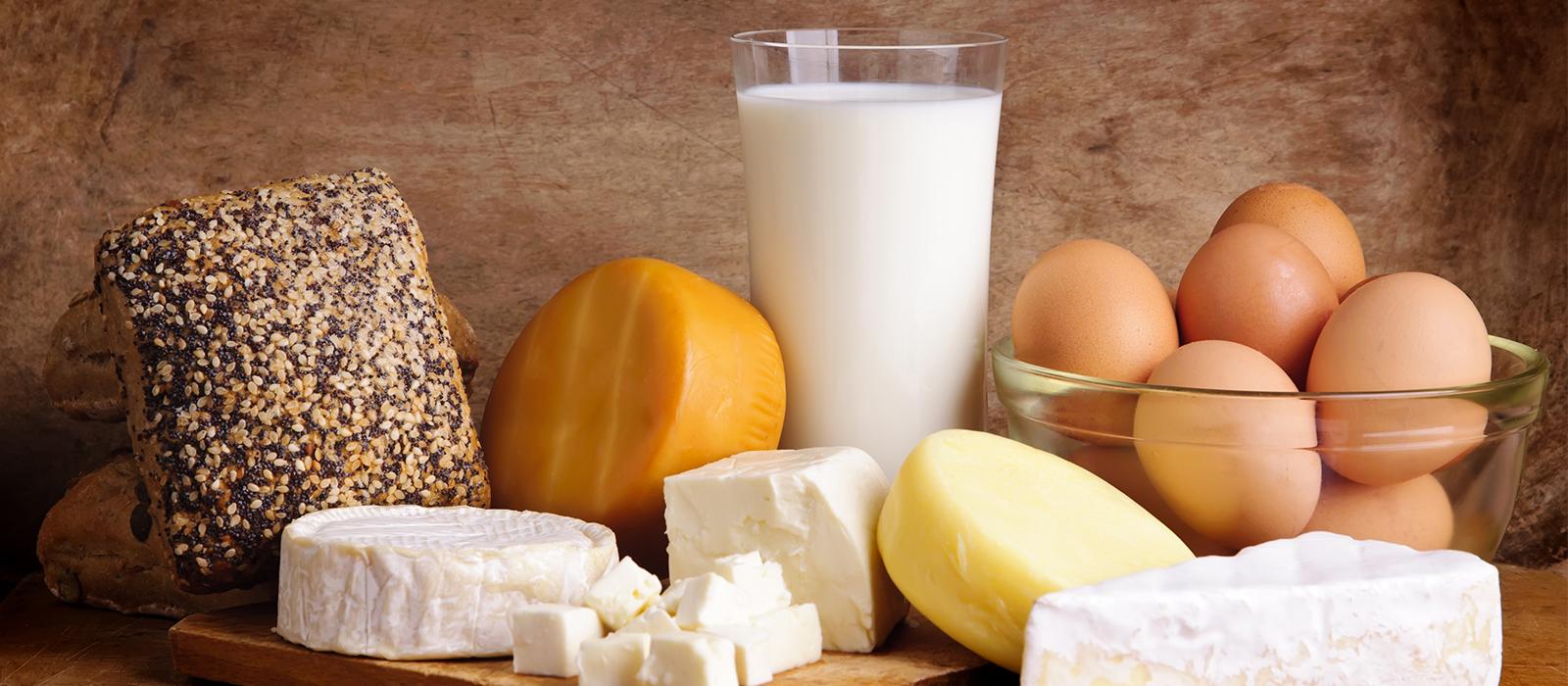 Alles über Käse Gesundheit